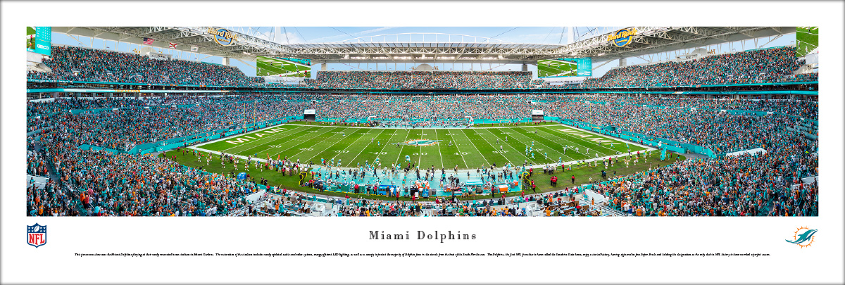 miami dolphins stadium panoramic(nfldol2)   4th and goal
